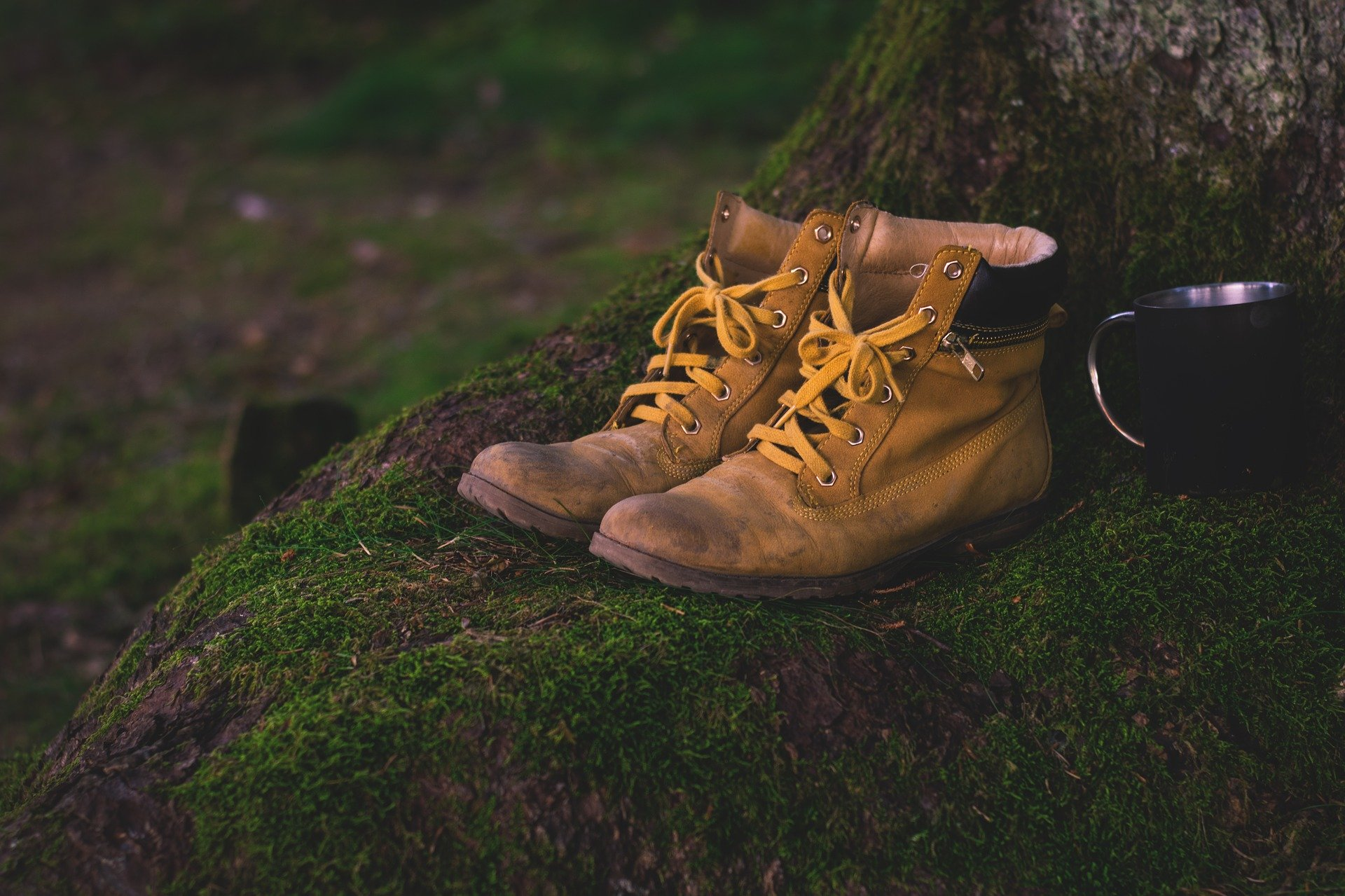 When should you get rid of your shoes?