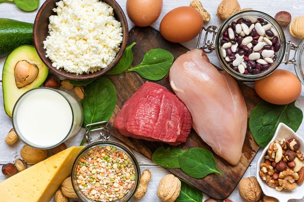 Understanding the Essential Functions of Protein in the Human Body